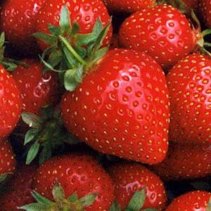emak_quecantik_32200894822AM_strawberry