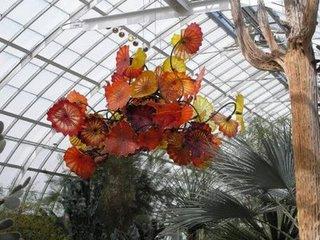 glass_garden_009