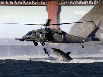 hiu menyerang helikopter