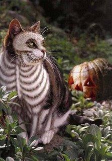 lukisan_kucing_jaller.wordpress.com_ 5
